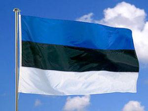 эстонская мультивиза