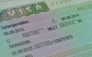 шенгенская-виза на год